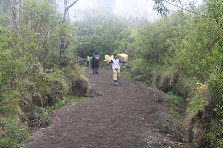 A l'aller, les porteurs qui redescendent du volcan