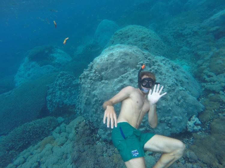 Il fait coucou le plongeur en apnée!