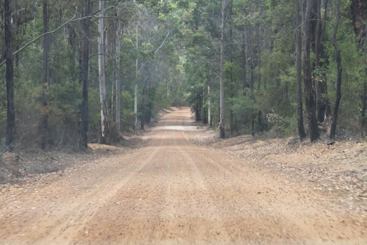 Le parc national, vide, grand, poussiéreux