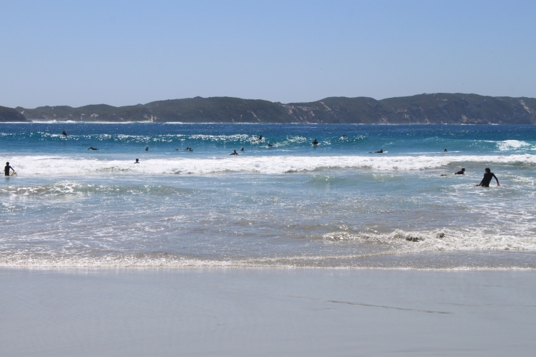 Une flopée de surfeurs