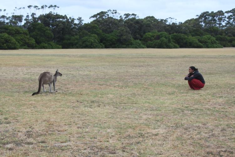 Jason en conversation avec un gros kangourou