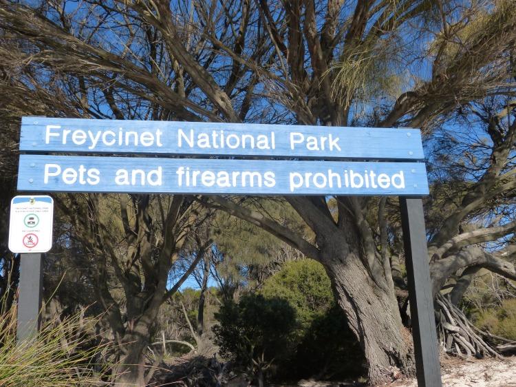 Sinon il y aurait un risque que les animaux de compagnie se révoltent et utilise nos armes à feux, logique.